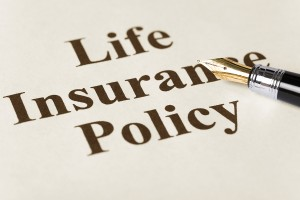 Which Life Insurance Is For You?